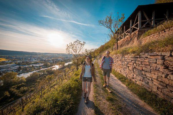 Fränkischer Rotwein Wanderweg