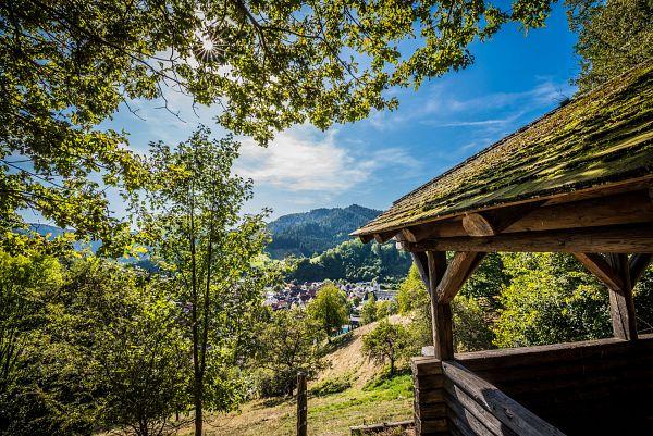 Genießerpfad Wolfacher Schlossblick