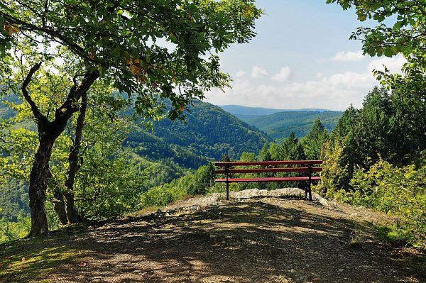Wisper Trails & Wispertaunussteig