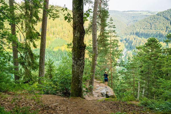 Wanderregion Nördlicher Schwarzwald